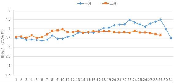 2月份蔬菜地头价低位平稳 预计3月份播种面积恢复增长