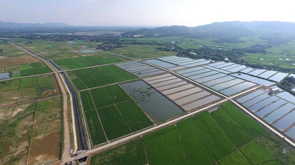 高标准农田建设项目田间工程施工组织设计