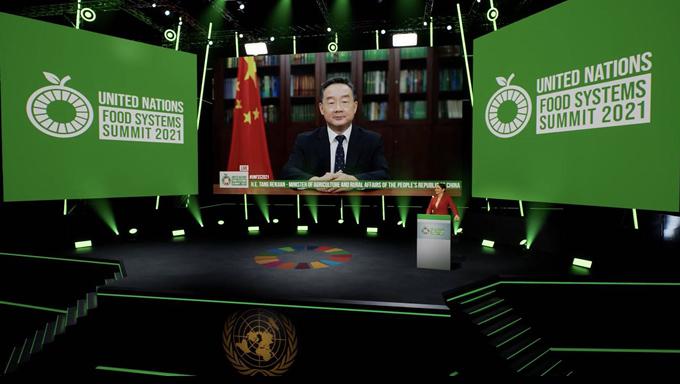 《【奇亿娱乐注册平台官网】联合国粮食峰会召开》