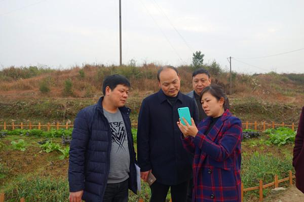 新化县新型职业农民阳海玲当选为第十三届全国人民大会